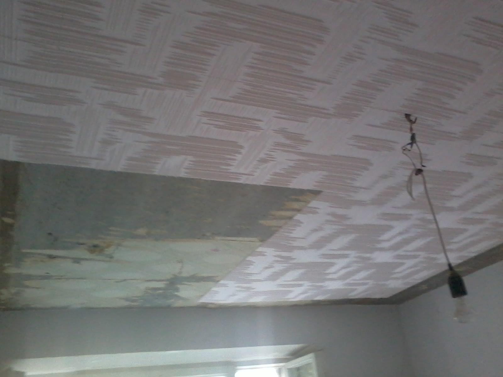руками ремонт потолочная плитка своими